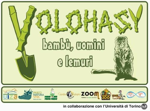 Progetto Volohasy-Bambù