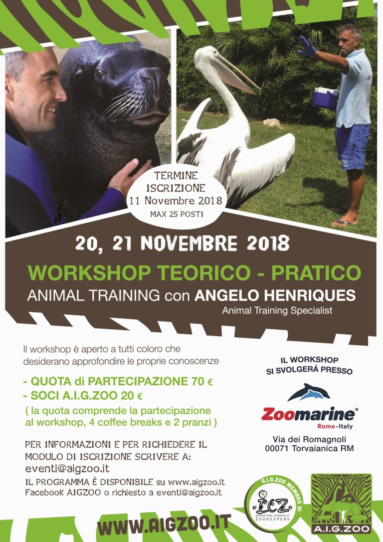 LOCANDINA_workshop_11-2018